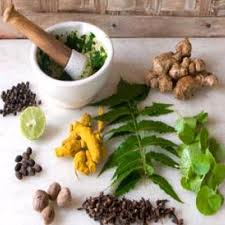 Herbal Cure For Ringing In Ears